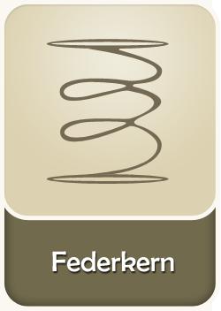 NOSAG-Federkern